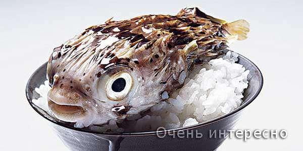 Фугу — легенда японської кухні